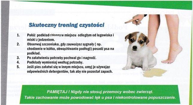 Podkłady podkład dla szczeniaka pieska psa 40 x 60 cm CHŁONNE MATY Siemianowice Śląskie - image 3