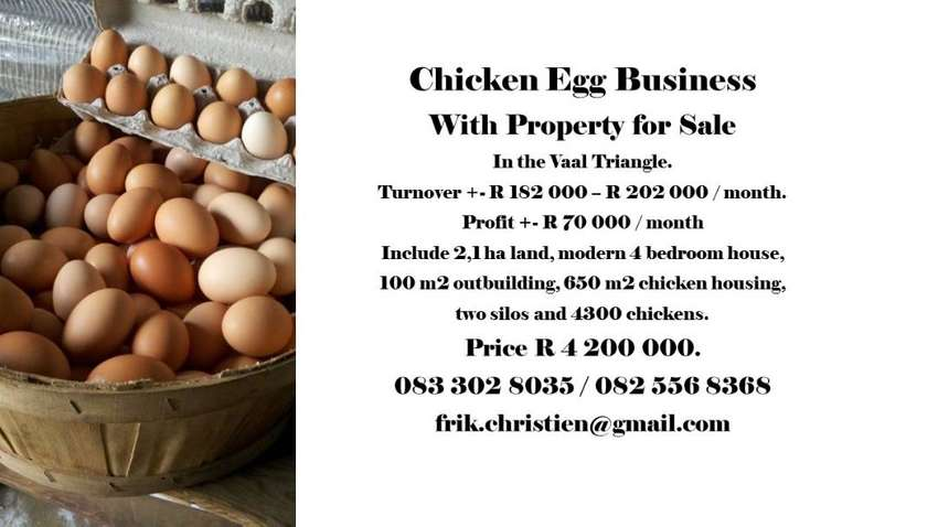 Chicken Egg farming business For Sale in Vaal Triangle. 0
