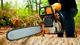 Professional Tree Felling & Garden Services.