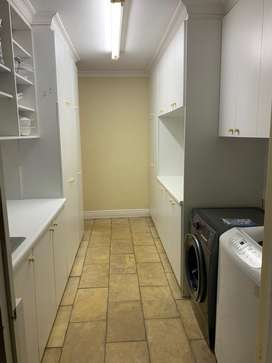 Scullery cupboards