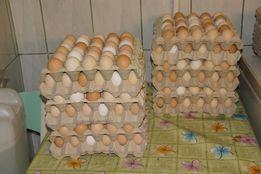 Wiejskie, świeże na wolnym wybiegu jajka