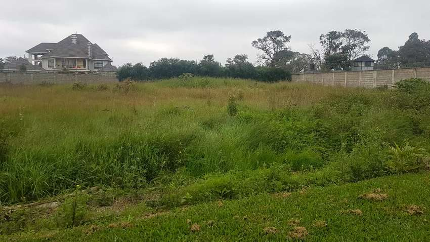 Prime 1/2 an acre Land in runda 0