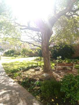 Room in flat to rent in Claremont/Kenilworth