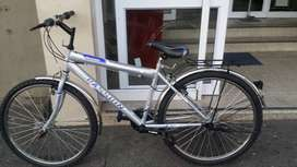 Passion bicycle for sale