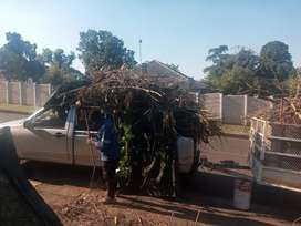 Garden refuse,houseold junk removal and once off clean ups free quotes