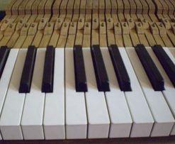 Клавиши для пианино Украина (б/у)
