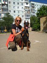 Кинолог. Дрессировка собак в Николаеве