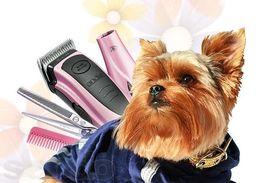 Профессиональная стрижка собак, кошек и других домашних животных