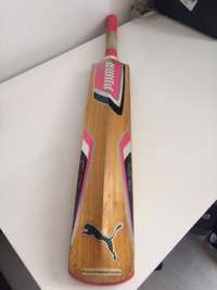 Image of Harrow size Pink Limited Edition Glenn Mcgrath Foundation Cricket Bat
