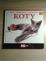 Koty: Rasy, charakter, ciekawostki