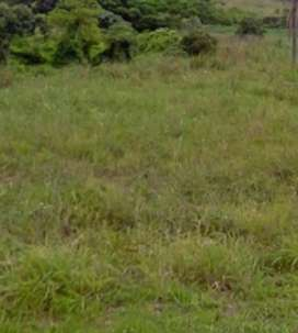 Site for  sale  duff road