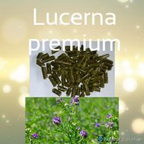Lucerna w formie pelletu 100%.