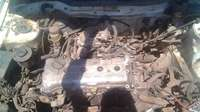 Image of Nissan sentra striping for spares