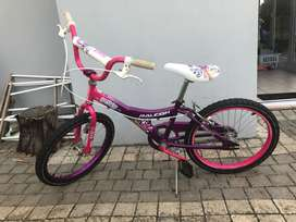 Girl Raleigh bicycle 20 inch