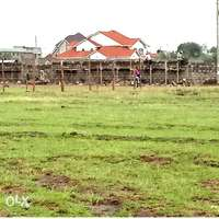 Kahawa sukari (C) A golden plot for sale 0