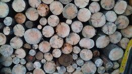 Drewno drzewo opałowe Sosna tanio