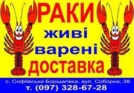 Самые чистые РАК и Креветка черноморская , тигровая, лангустины!