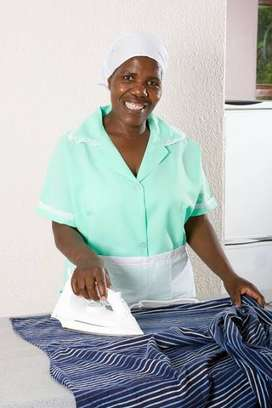 Male or Female Domestic worker wanted