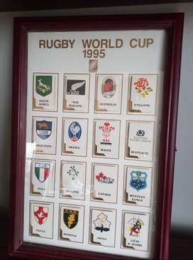 Rugby World Cup 1995 Cards in Frame - Cards fold out detailing team st