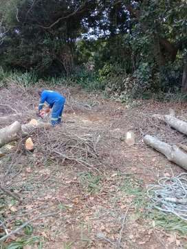 Tree Cutting and Gardening Services