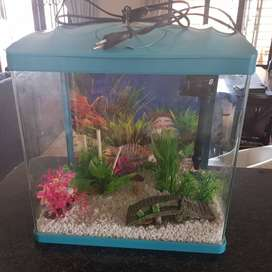 Fish tank and all accesories