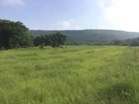 6 hectare, highly arable small farm for sale. Incl share in 800h game