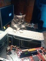 Установка Windows. Ремонт ПК, ноутбуков. Восстановление информации.