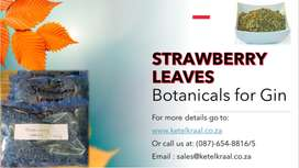 Strawberry Leaves Botanicals for Gin