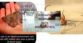 Pest Control and Cleaning