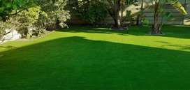 Artifial grass at cost R80m2