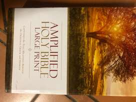 Amplified Large Print Bible with creative tabs