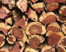 Hard Wood for sale
