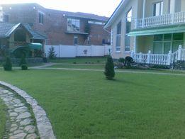Автополив, автоматический полив, озеленение, обрезка деревьев