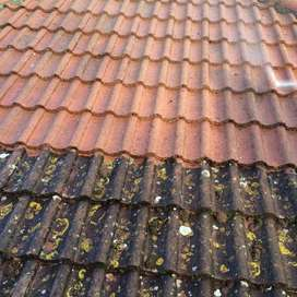 Roof Cleaning Durban