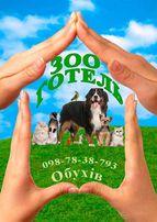 Гостиница зоогостиница для собак и кошек Передержка Дрессировка Обухов