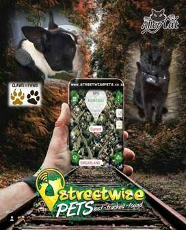 Streetwise Pets Animal Tracking Devices