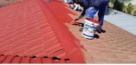 Cheap roof painting