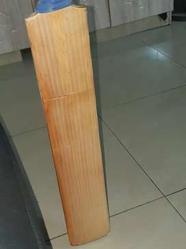 MB cricket bat limited Edison