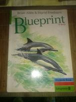 Język angielski.Podręcznik-Blueprint Two