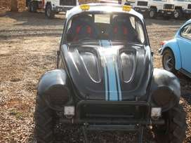 Beetle Off-Road Rally Car