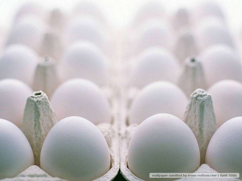 Eggs for sale 0