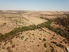 Cattle/wild farm for sale in Groot marico