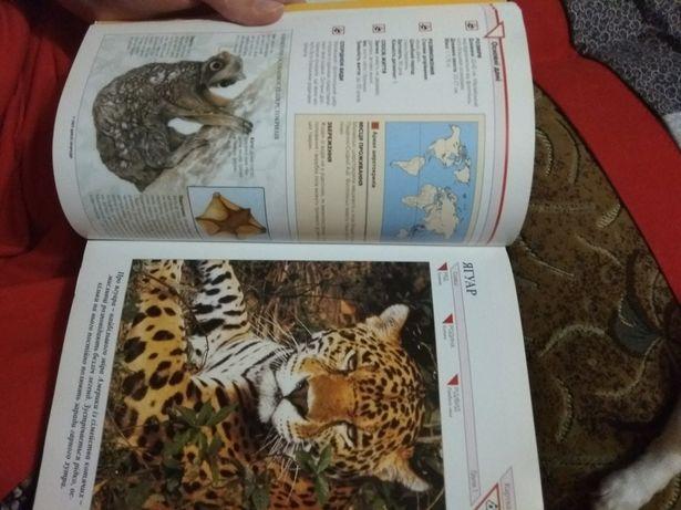 Познавательная книга про животных. Кременчуг - изображение 4