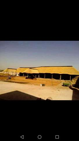 Thatching services ,lapas,Braai stands,Building ,plaster and tiling