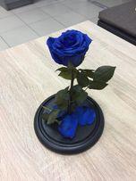 Роза в колбе+(коробка+гравировка+лепестки).Тренд 2019