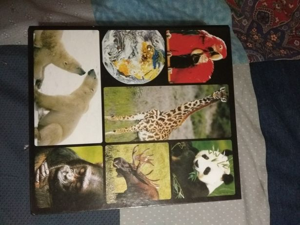 Познавательная книга про животных. Кременчуг - изображение 1