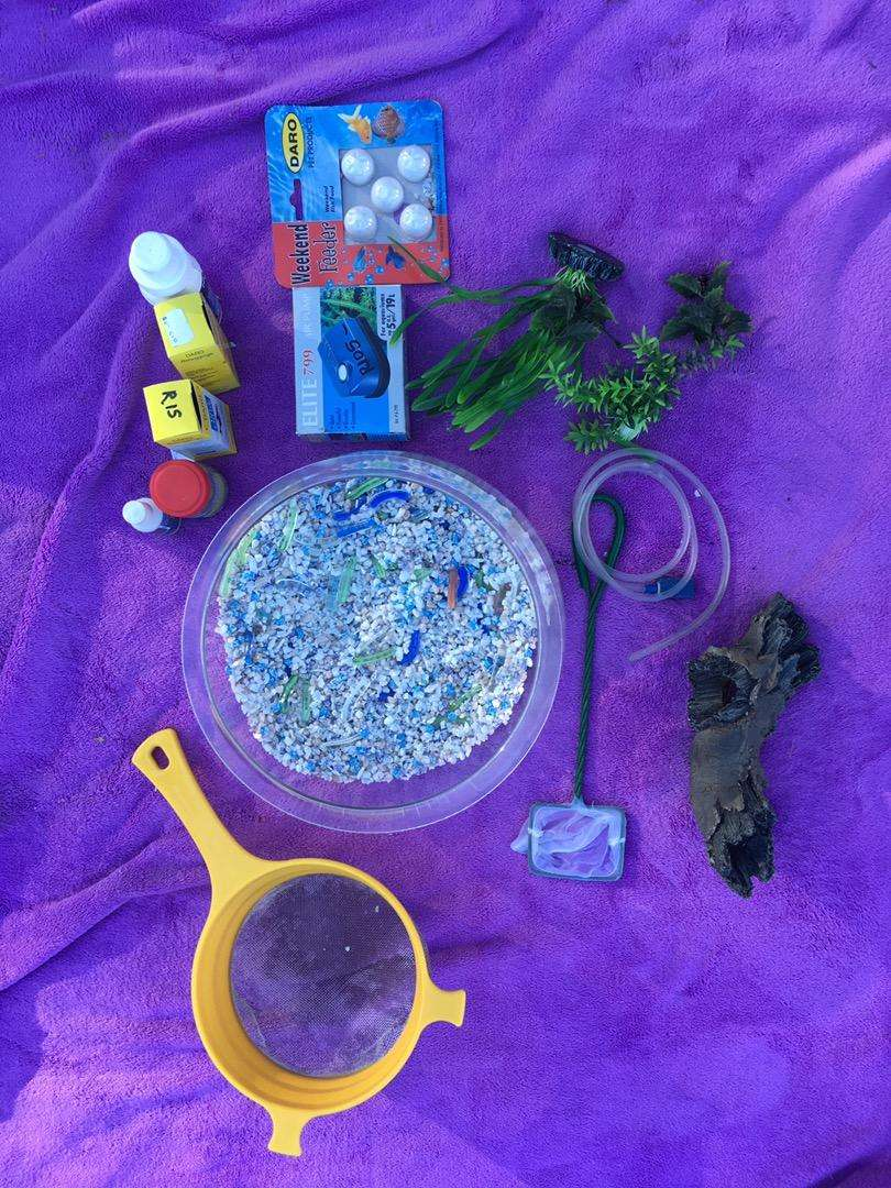 Round Fish bowl and accessories 0