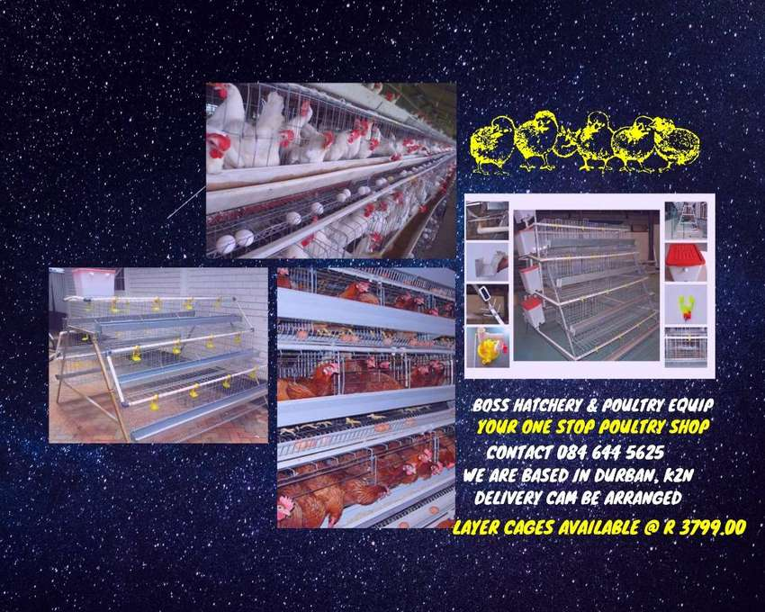 Layers Cages - Boss Hatchery & Poultry Equip