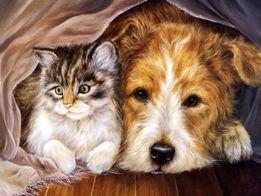 Стрижка собак и котов