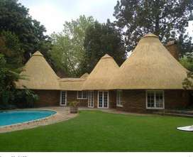 Thatch lapas and roofing services